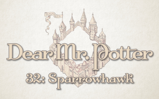 Dear Mr. Potter 32: Sparrowhawk
