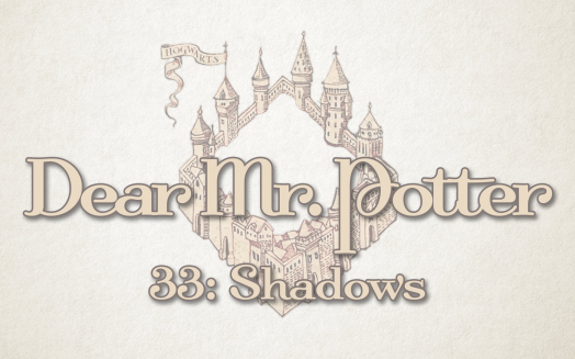 Dear Mr. Potter 33: Shadows