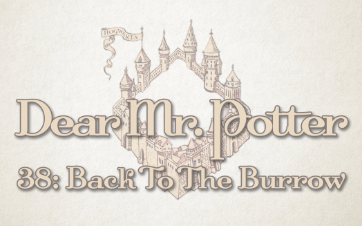 Dear Mr. Potter 38: Back To The Burrow
