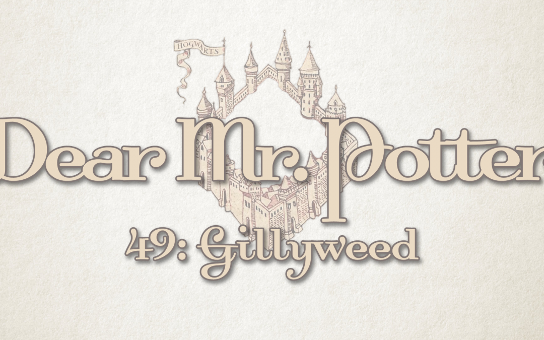 Dear Mr. Potter 49: Gillyweed