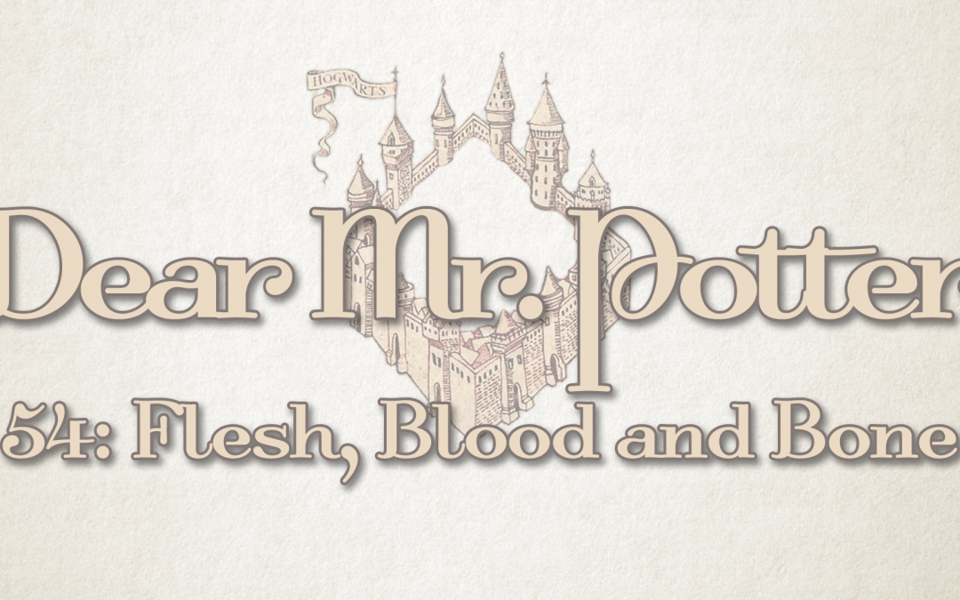Dear Mr. Potter 54: Flesh, Blood And Bone